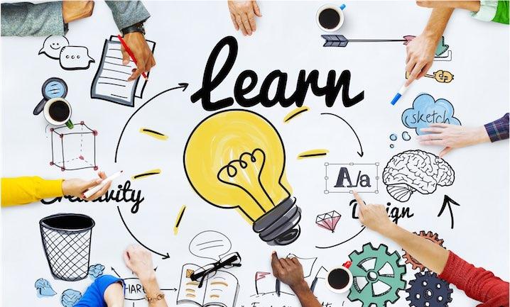 Lär organisationen att lära