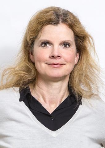 Lena-Karin Allinger, Previa.