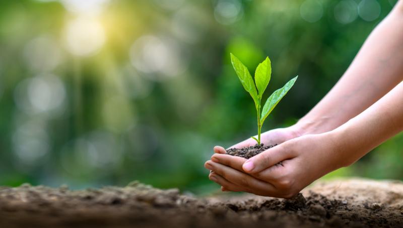 Viktigt för jobbsökare med aktivt hållbarhetsarbetet