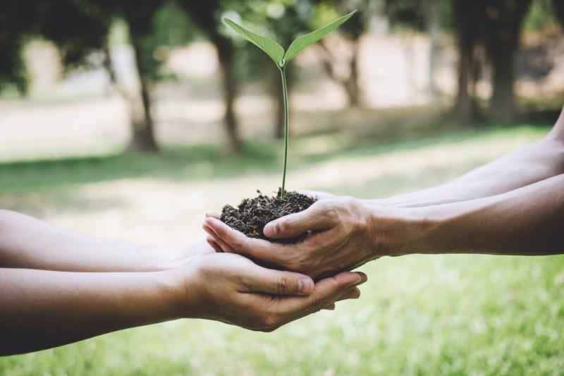 Fokus på hållbarhet ett lyft för kvalitetsrollen