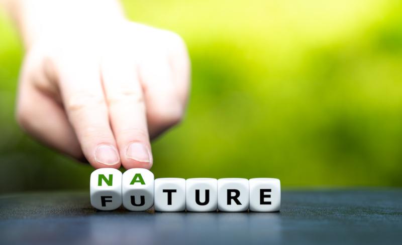 Ny standard vägleder kommuner och regioner mot Agenda 2030